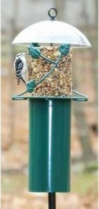 Birds Choice Squirrel Proof Pole Mounted Seed Cylinder Feeder