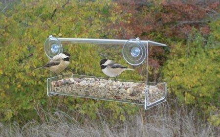 Songbird Essentials Clear View Open Diner