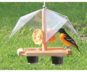 Songbird Essentials Oriole Buffet - Fruit - Jelly