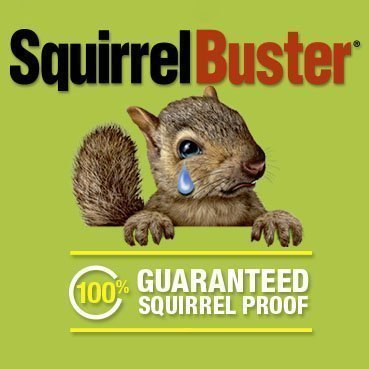 SquirrelBuster