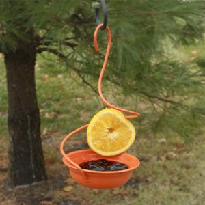 Woodlink Oriole Feeder